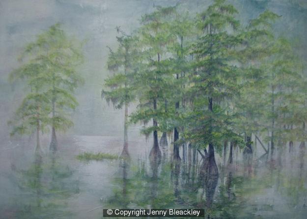 257981_swamp-cypress