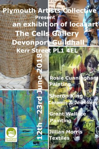 694456_plymouth-artists-collective-exhibition_1524513457